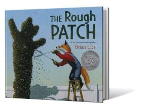 Rough Patch2