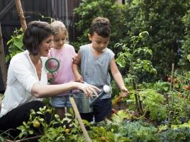 Kids and Garden_607542530
